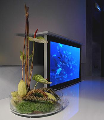 showroom - kblue - vicenza - domotica - smart home - building ... - Soggiorno Con Tv A Scomparsa